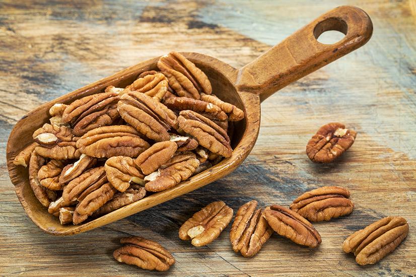 Pecan Nut Farming A Growing Phenomenon Klk