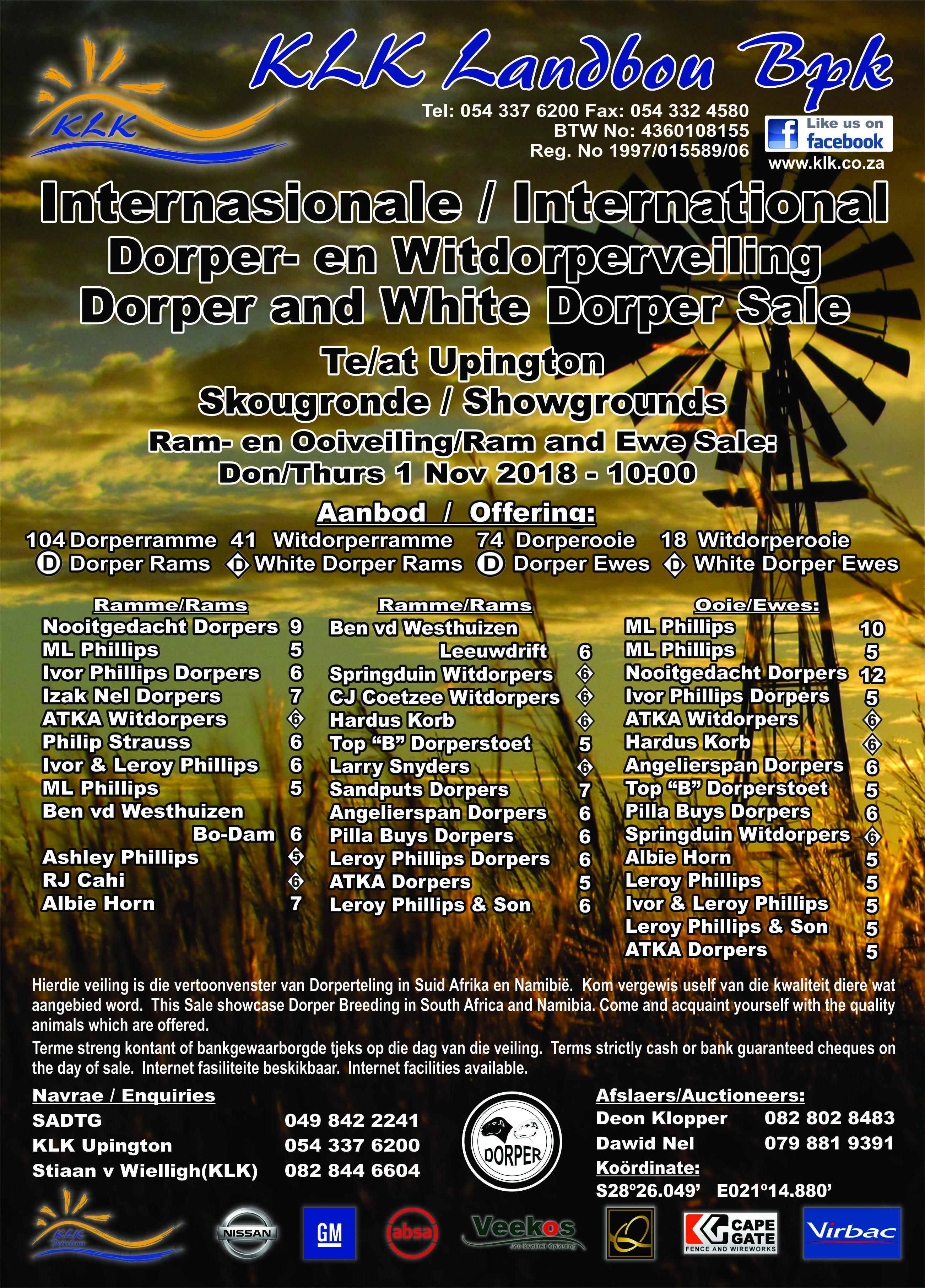 Internasionale Dorper- en Witdorperveiling