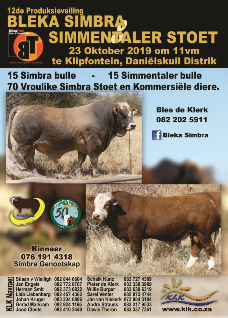 [:en]BLEKA Simbra & Simmentaler Auction Klipfontein, Daniëlskuil[:af]BLEKA Simbra & Simmentaler Veiling Klipfontein, Daniëlskuil[:]