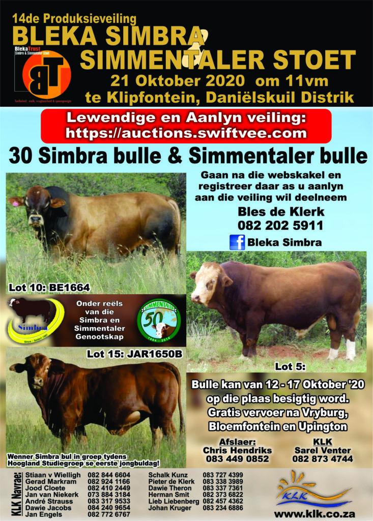 BLEKA Simbra & Simmentaler Veiling Klipfontein, Daniëlskuil