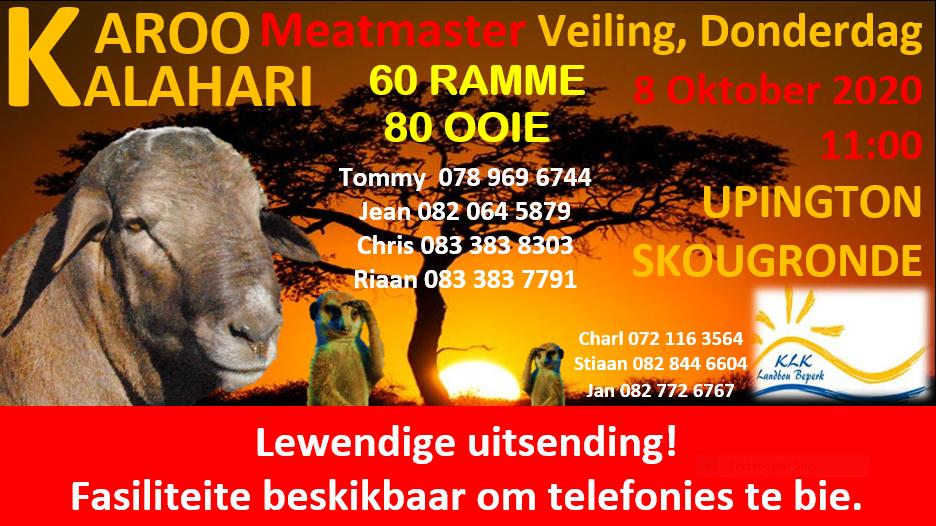 Kalahari Karoo Meatmaster Veiling, Upington